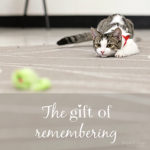 part 2 – inspired in the classroom {the gift of remembering}