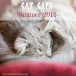 Chat Cafe {Summer 2016}