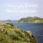 Newfoundland {photography friday}