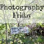 storytelling through pictures {photography friday}