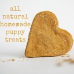 all natural homemade puppy treats