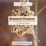Easy Birdseed Feeders {DYI}